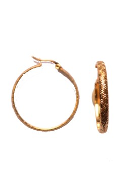 earrings 33-112 gold
